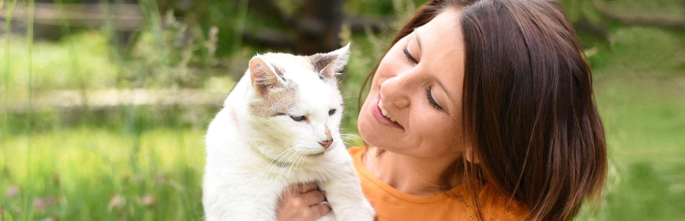 Madame Moustache, spécialiste du comportement du chat, comportementaliste chat, relation humain-chat, formation du Monde du chat, associations de protection des chats, famille d'accueil pour chats, Lausanne, Canton de Vaud, Suisse